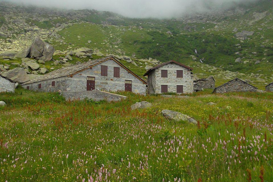 Alpe Alpetta (2)