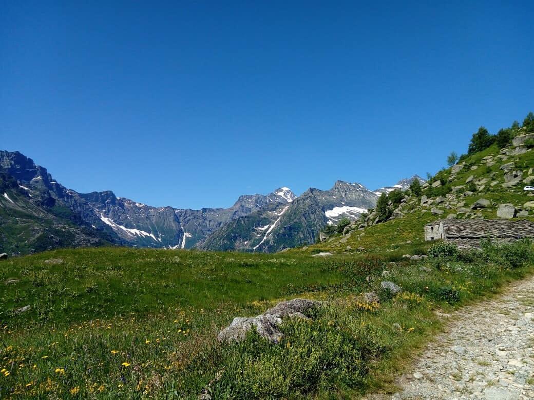 Alpe Alpetta (3)